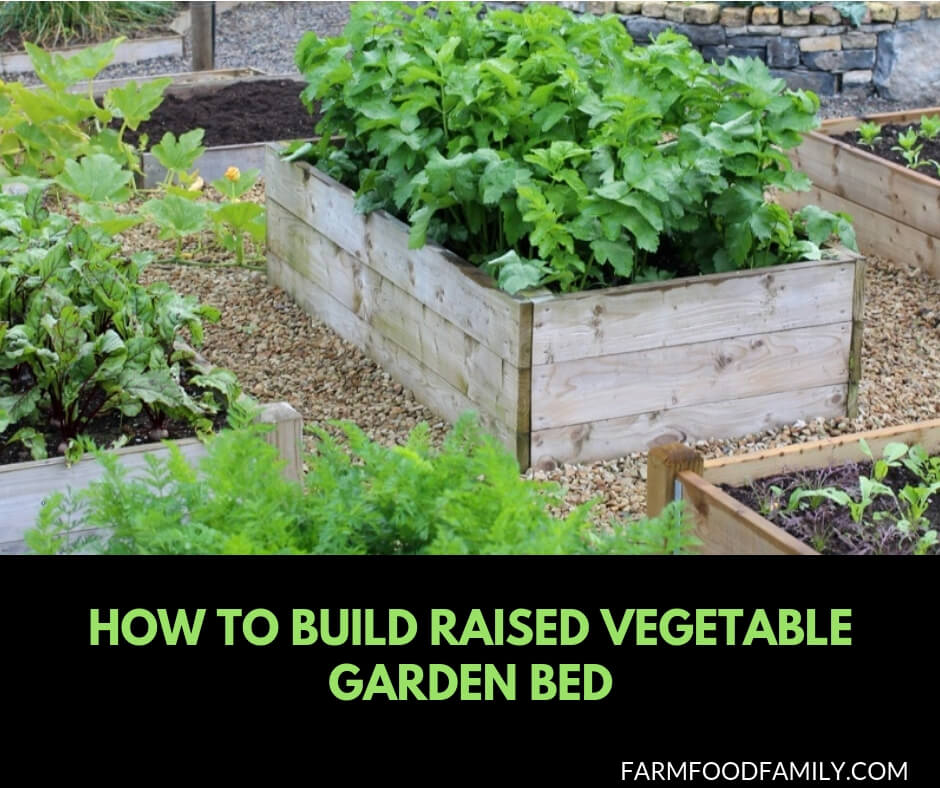 46+ Simple Raised Vegetable Garden Bed Ideas 2020
