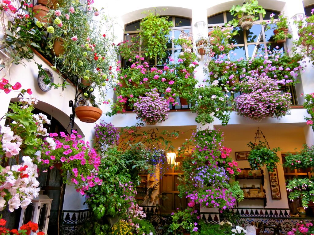 A Flowery Patio