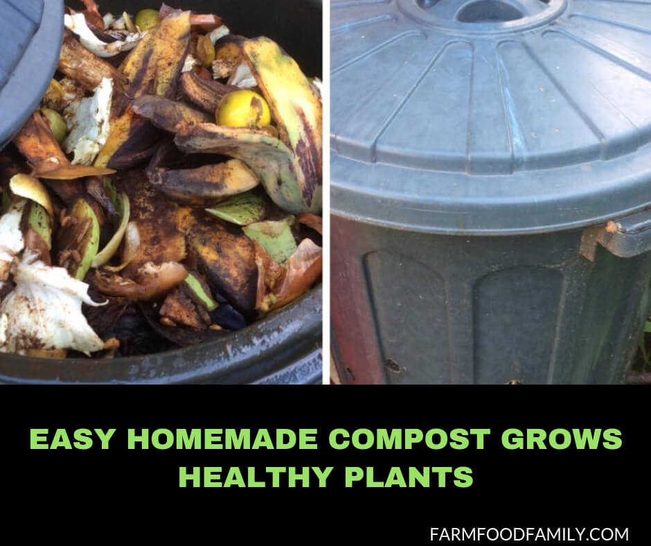 Easy Homemade Compost Grows Healthy