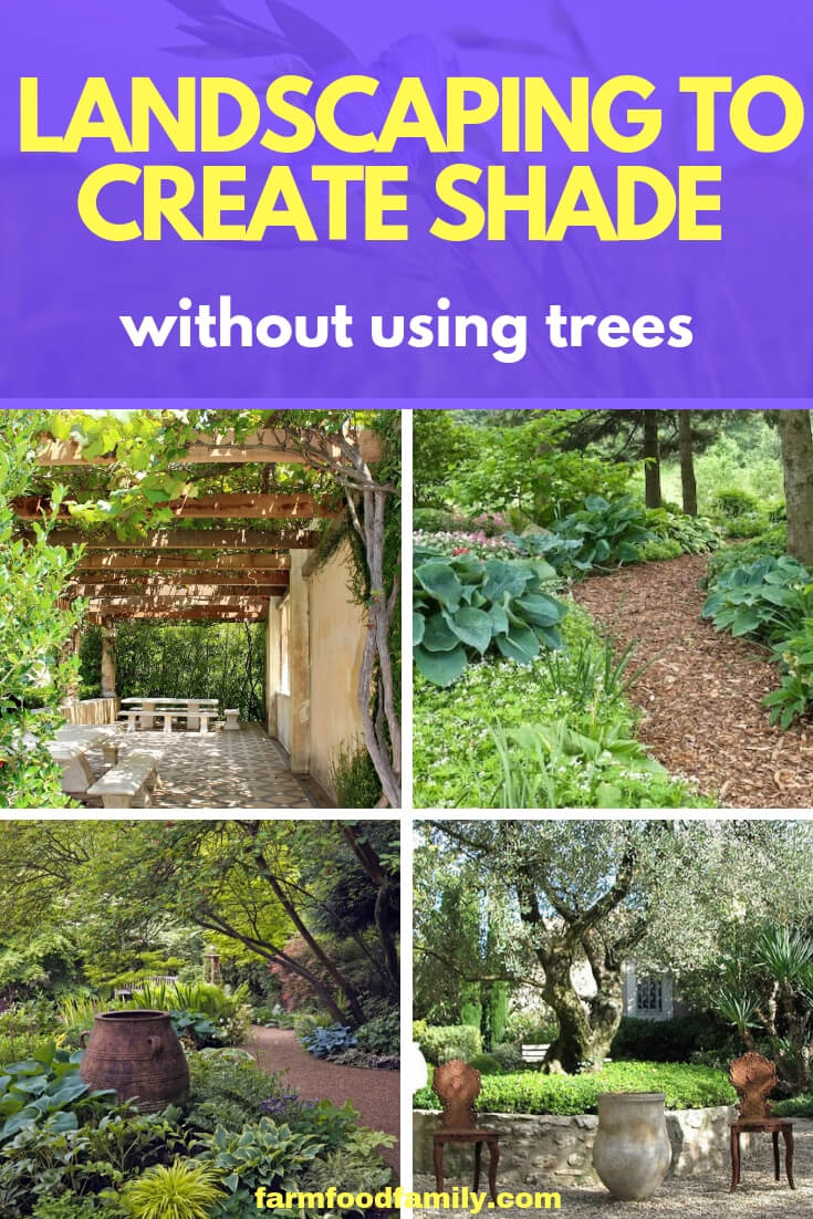 Landscaping to Create Shade without Using Trees