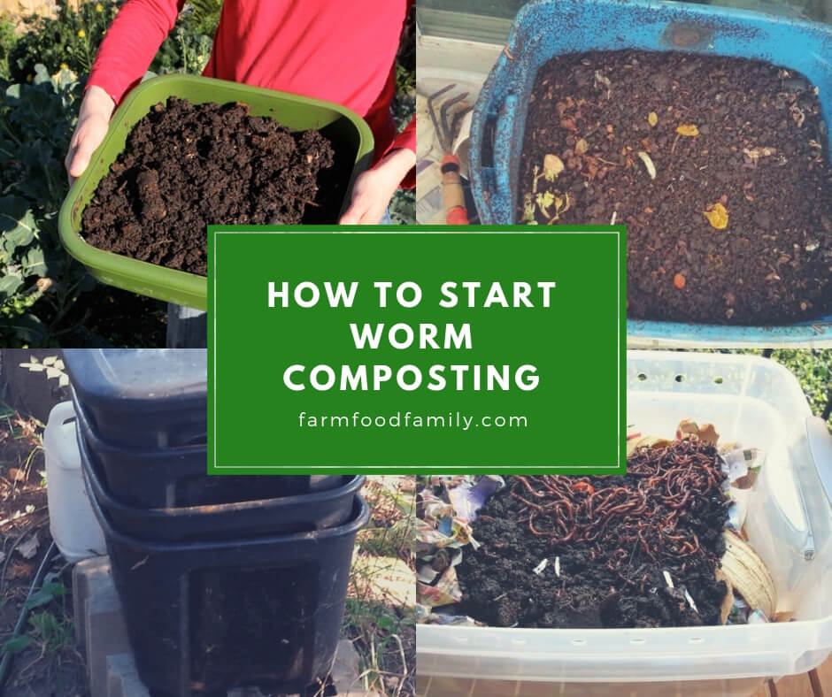 Recycle Kitchen Waste into Compost by Using Worms