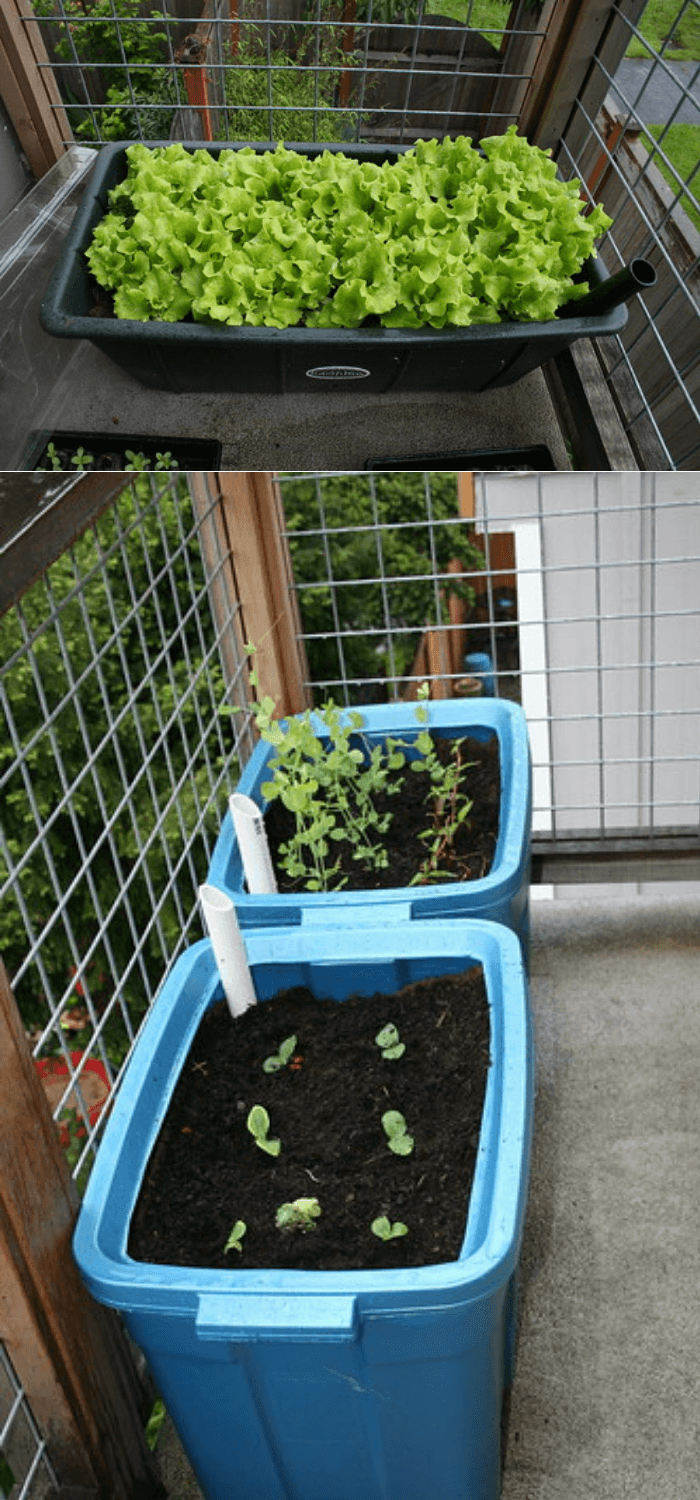 Apartment-style garden bed