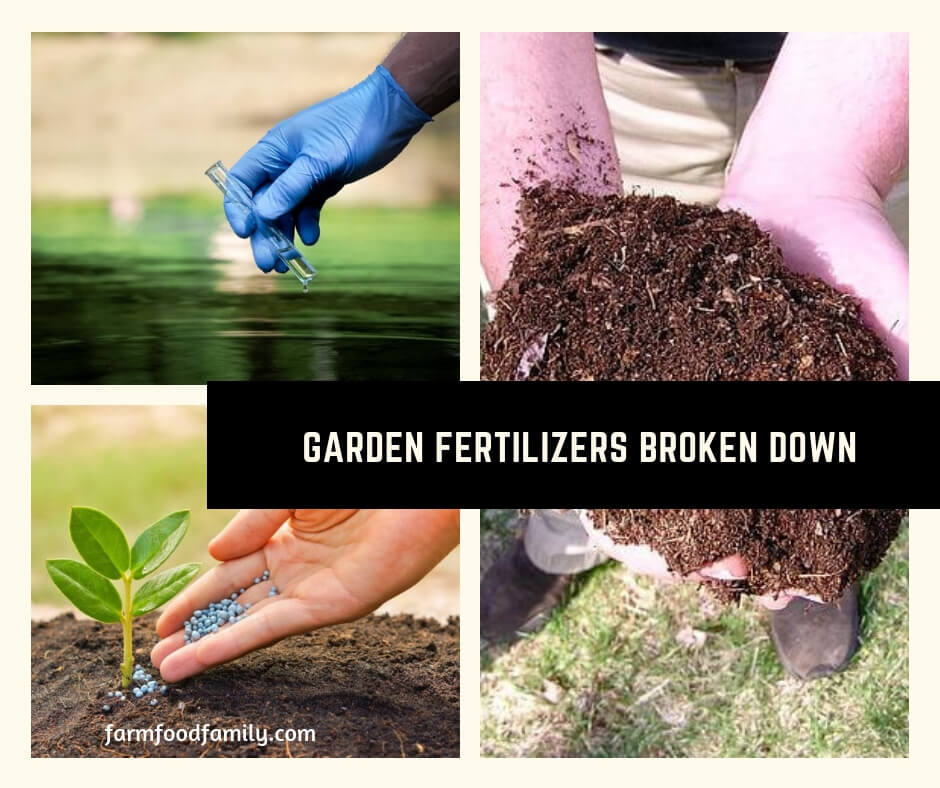 "Garden Fertilizers Broken Down: What Does ""N P K"" have to do with Gardening?"