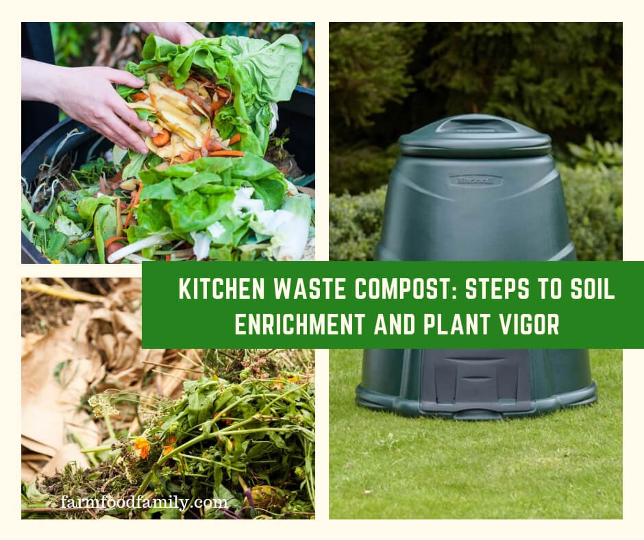 Kitchen Waste Compost: Steps to Soil Enrichment and Plant Vigor