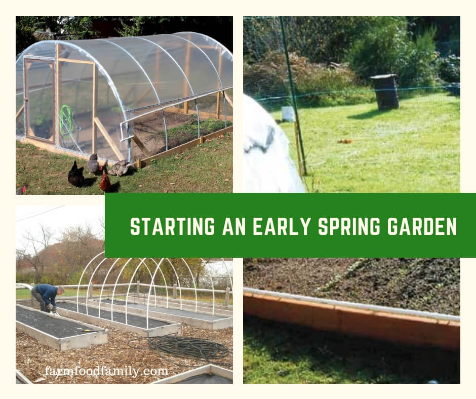 Starting an Early Spring Garden