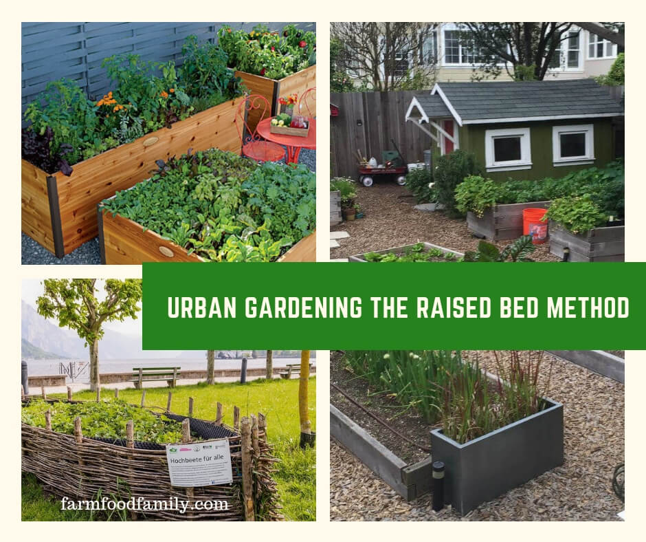 Urban Gardening the Raised Bed Method