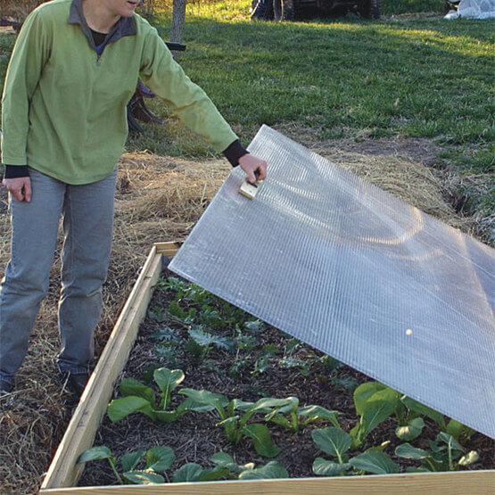 How to Construct a Cold Frame for Overwintering Plants