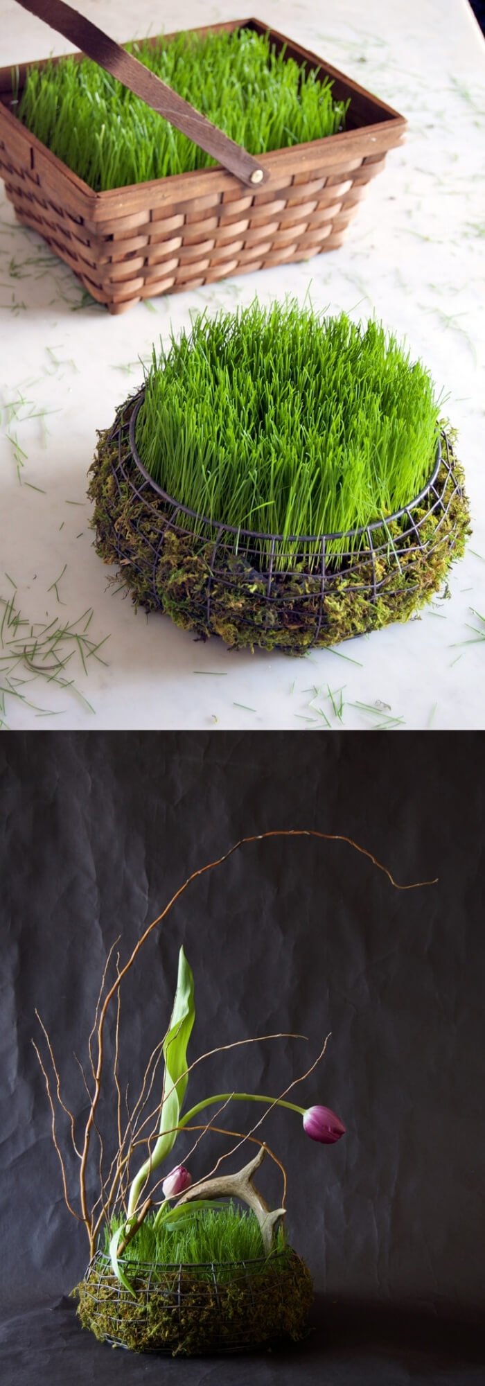 Easter basket filled with grass in 5 days   Creative Easter Garden Projects & Ideas Your Kids Will Love