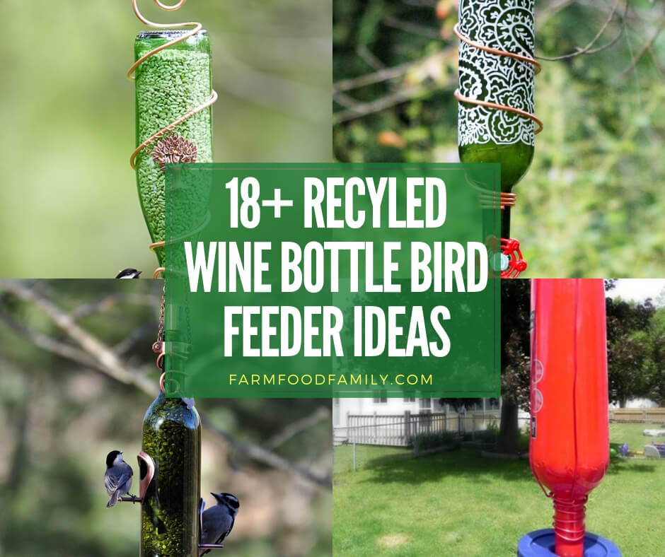 Recycled wine bottle bird feeder ideas
