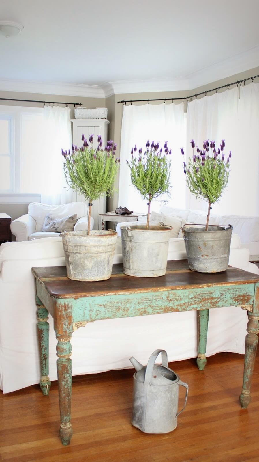 Lavender Topiaries | Best Farmhouse Indoor Plant Decor Ideas & Designs