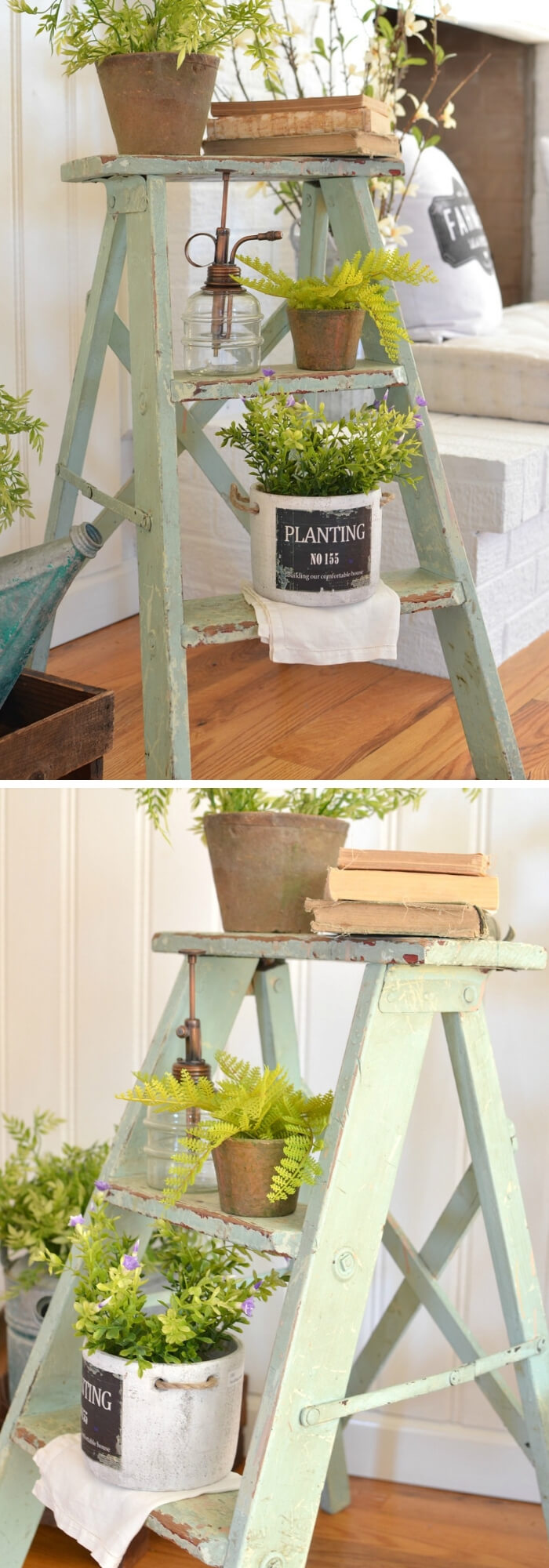 Painted Pots on green ladder | Best Farmhouse Indoor Plant Decor Ideas & Designs