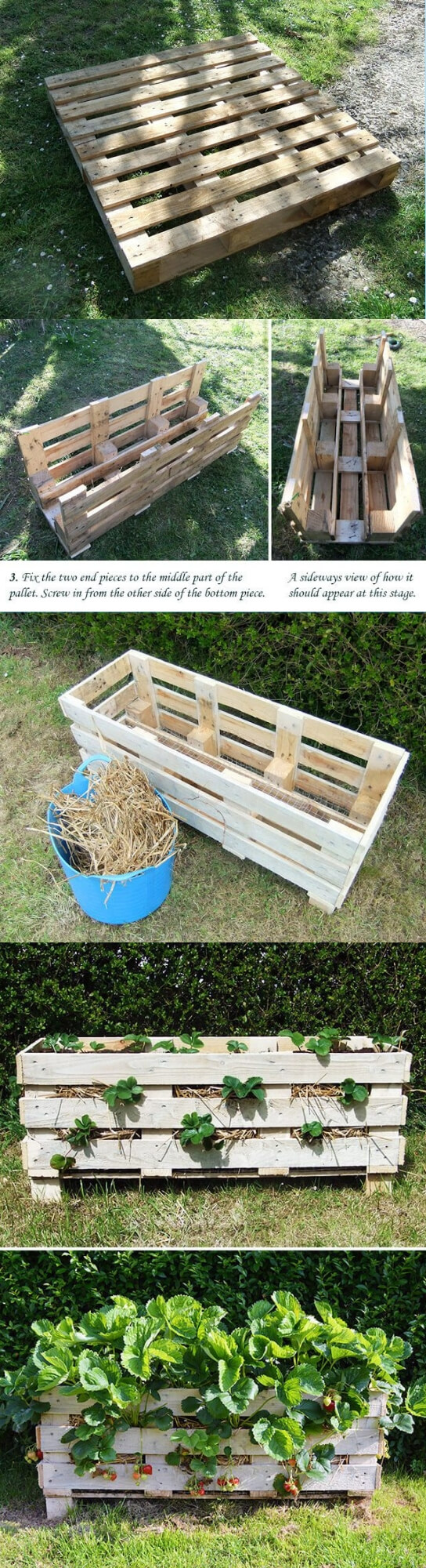 How to use wooden pallet to make strawberry planter