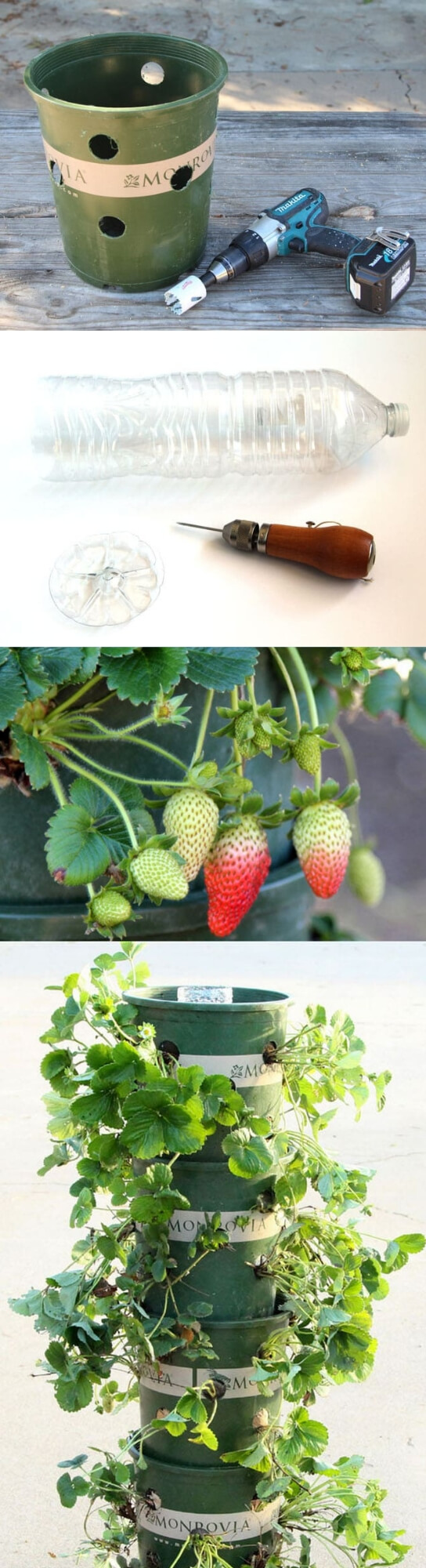 DIY Strawberry Tower With Reservoir