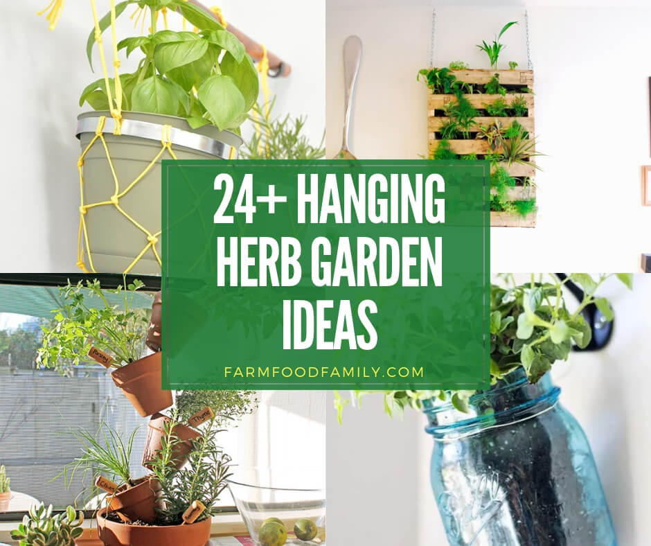 best hanging herb garden ideas