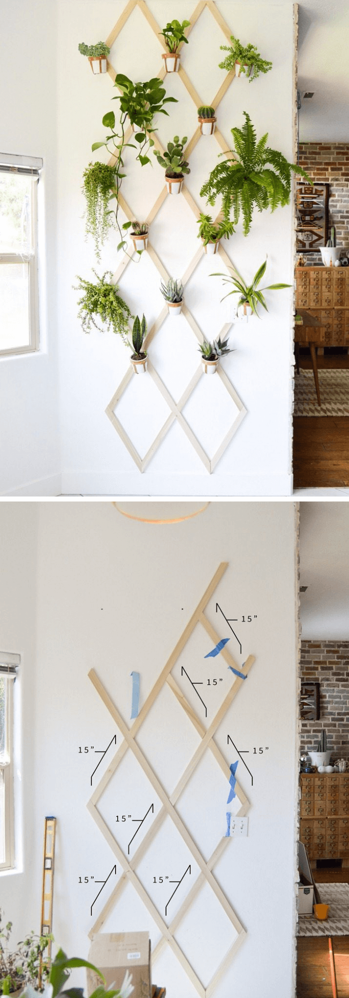 DIY Wood and Leather Trellis Plant Wall