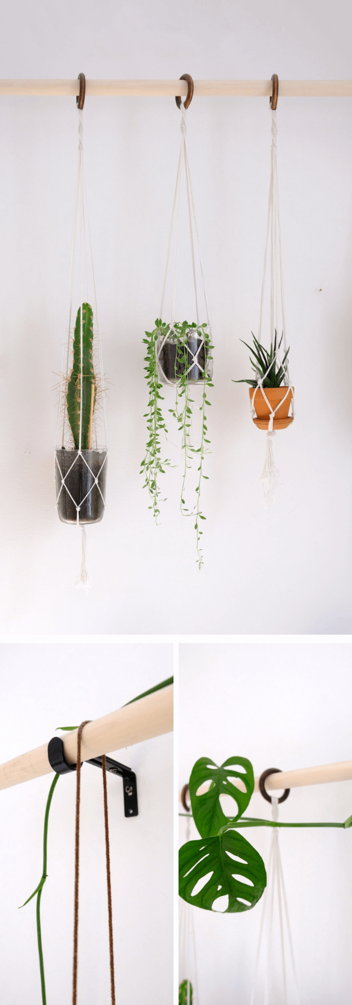 DIY Plant Wall Made from a Broomstick