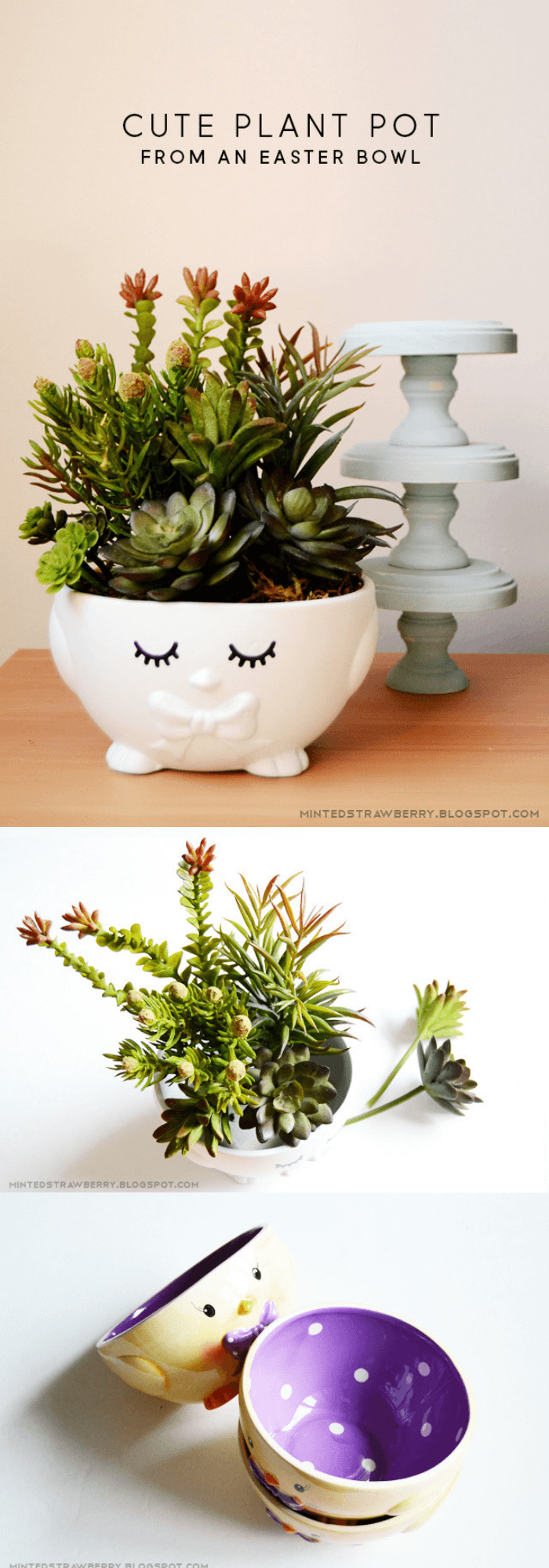 Cute plant pot from an Easter bowl