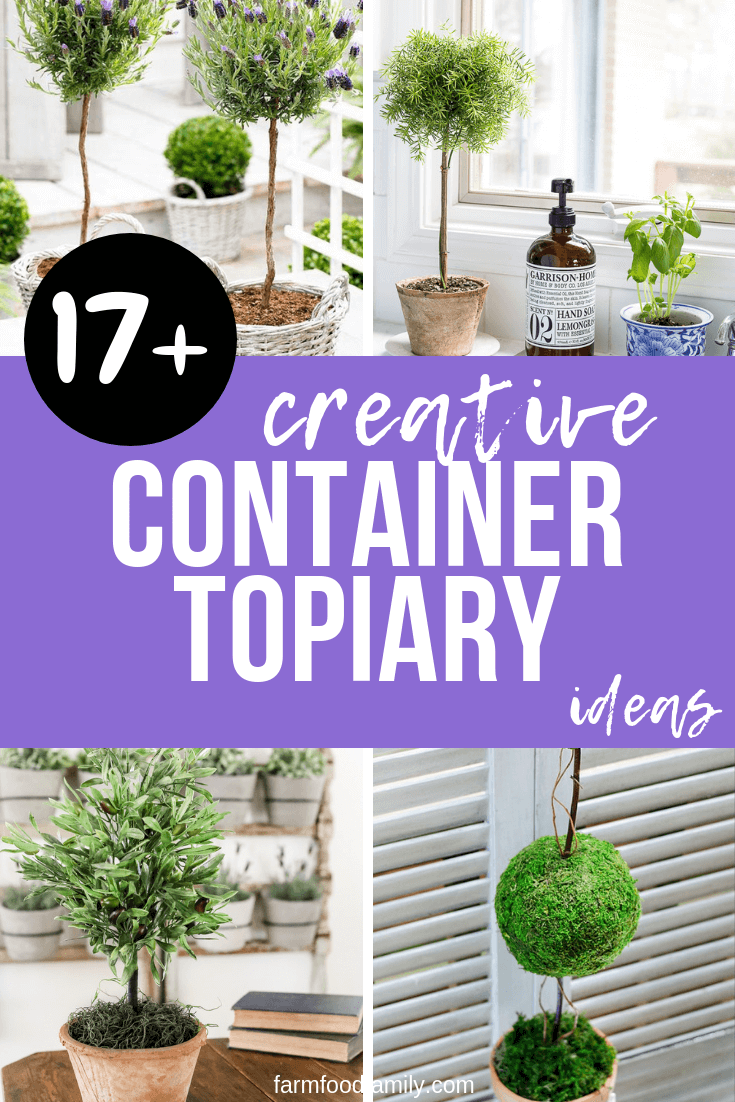 how to make a topiary tree in pot for beginners