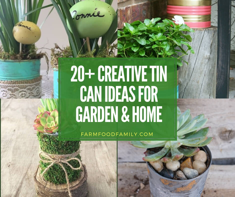 20 Useful And Easy Diy Garden Projects: 20+ Best DIY Tin Can Ideas & Projects For Your Garden