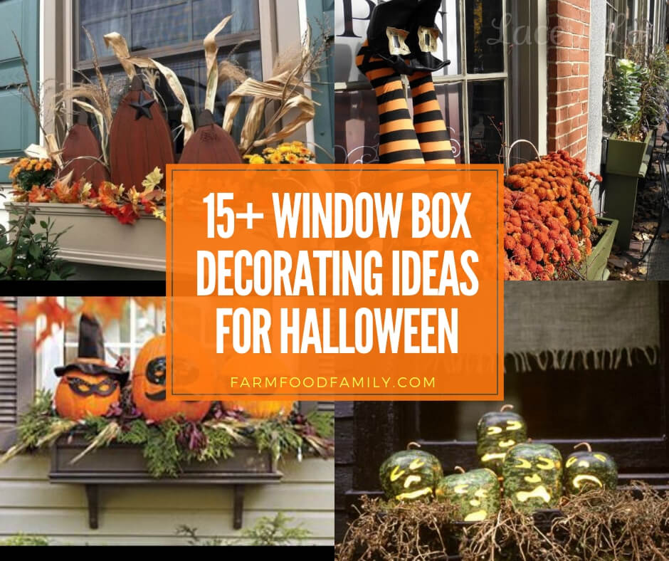 best window box decorating ideas for Halloween