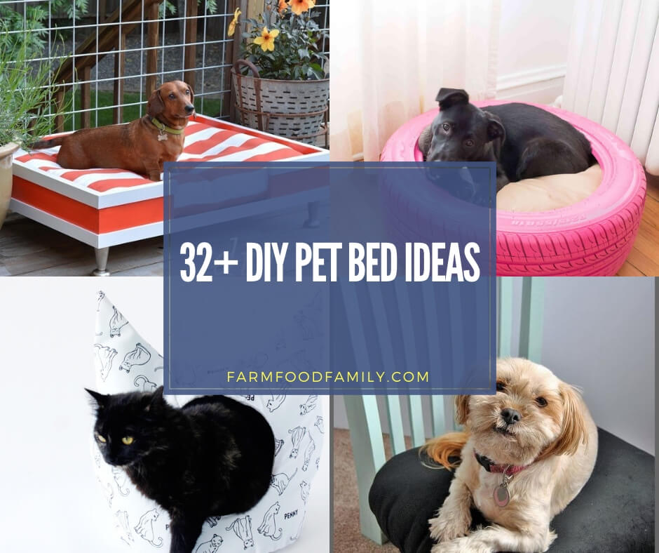 Stupendous 32 Creative Diy Pet Bed Ideas Projects For 2019 Evergreenethics Interior Chair Design Evergreenethicsorg