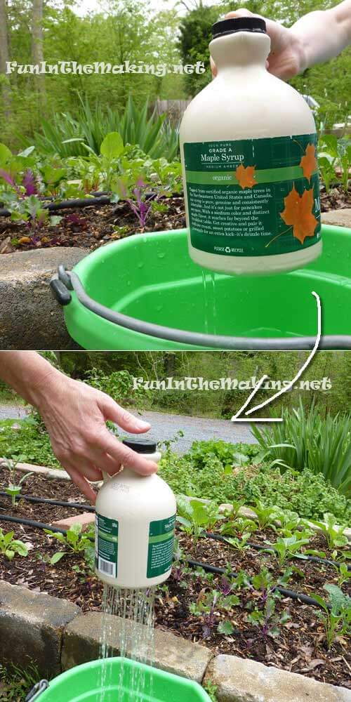 Thumb controlled watering pot