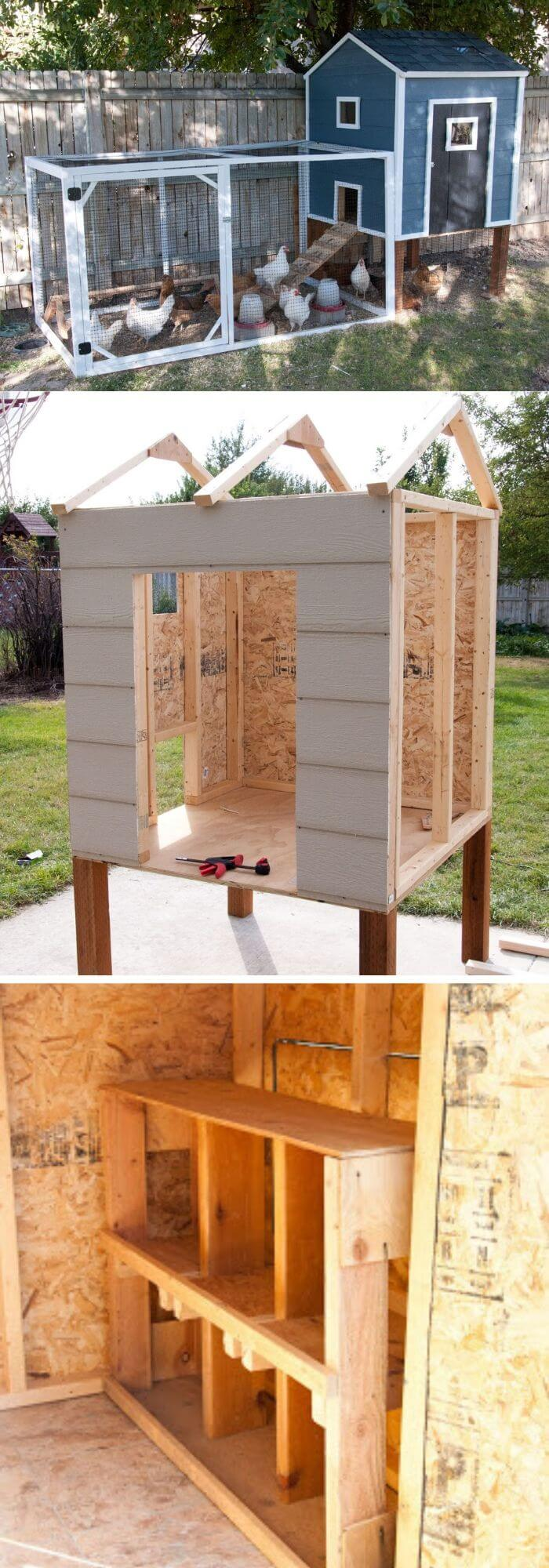 Penthouse style chicken coop