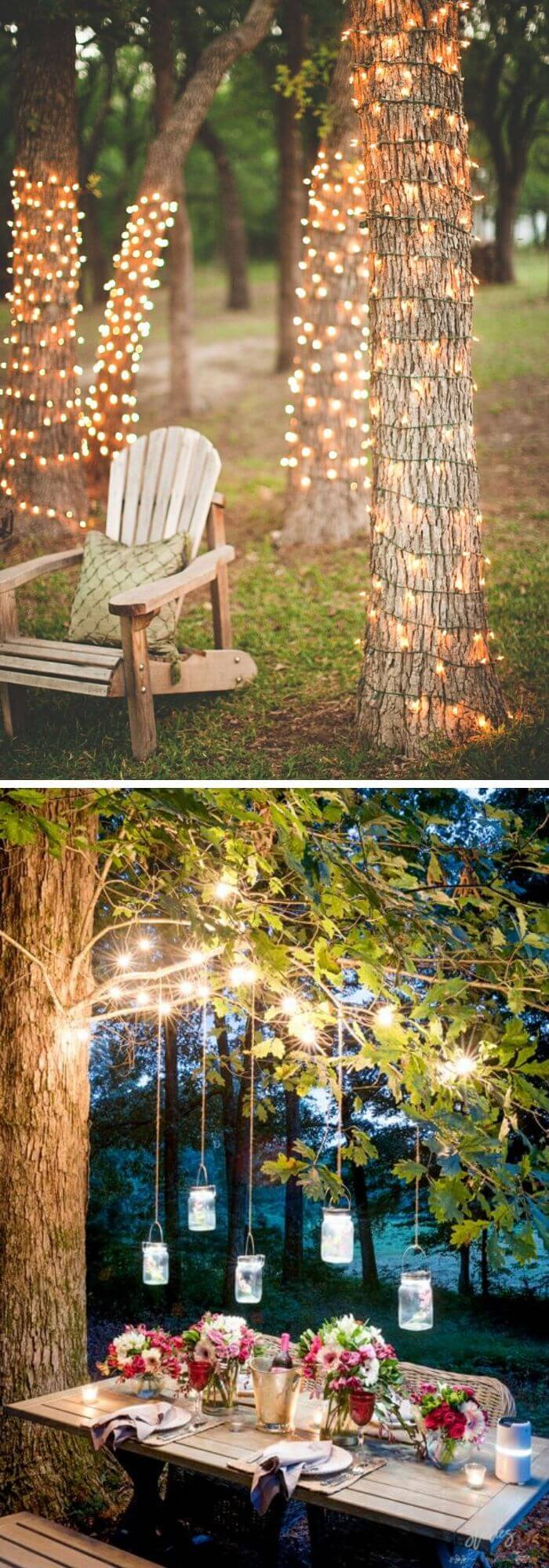 A Backyard with Lightened up Trees