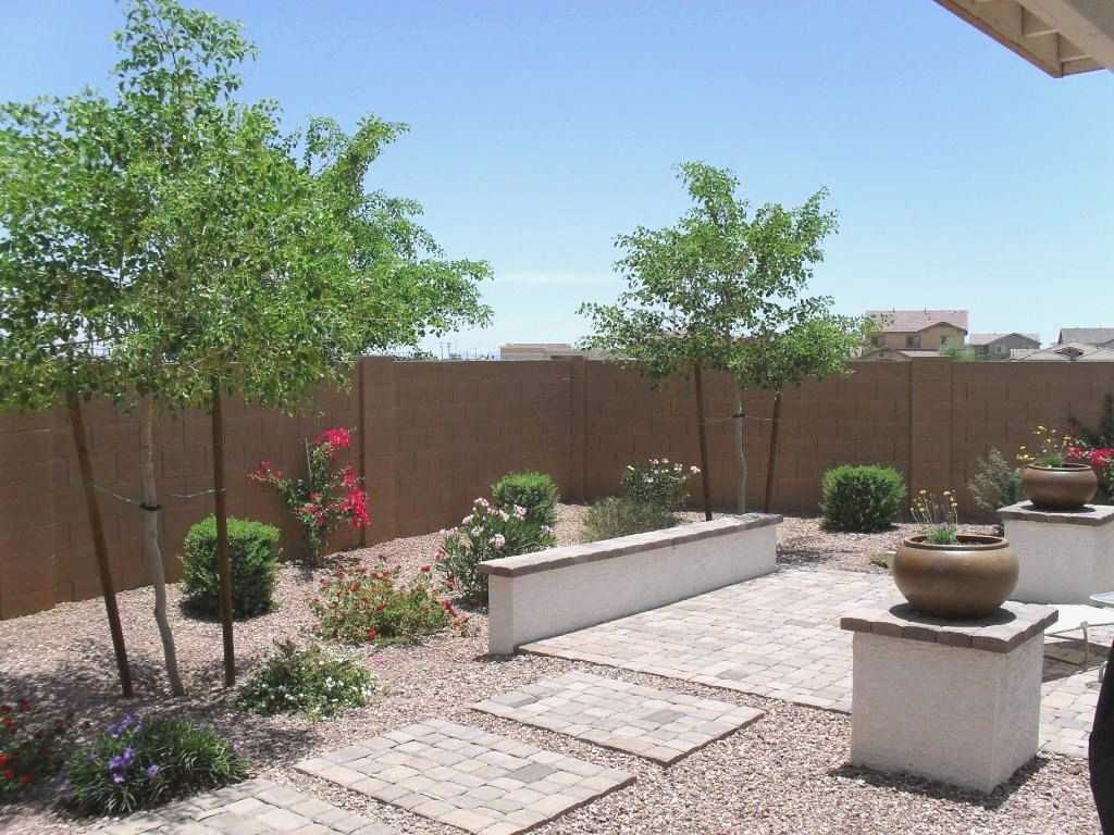 Arizona backyard ideas with plant and flower arrangements