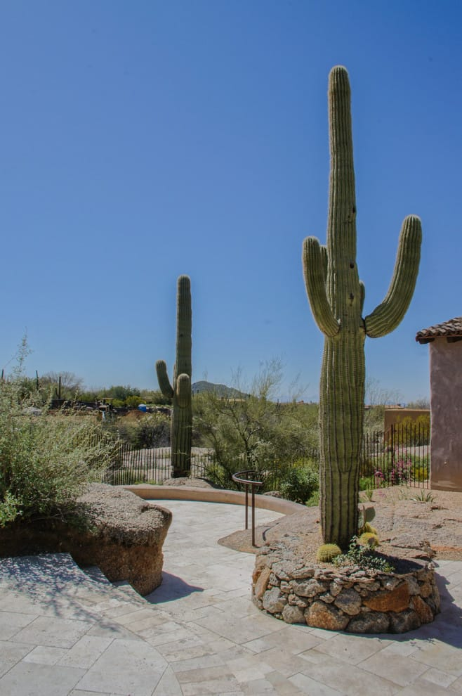 contemporary landscaping in Arizona