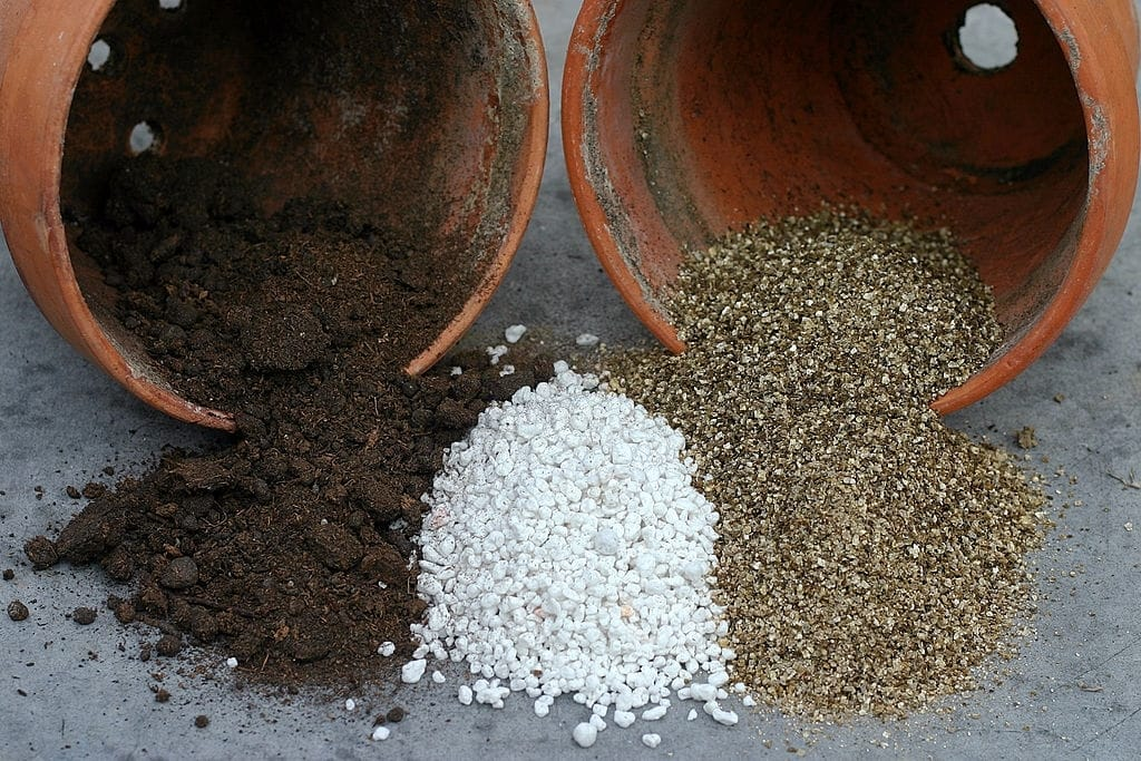 How to use perlite in potting mix