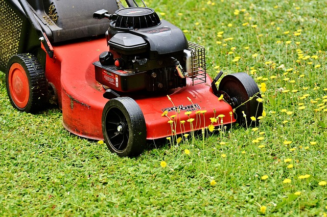 Mow Your Lawn