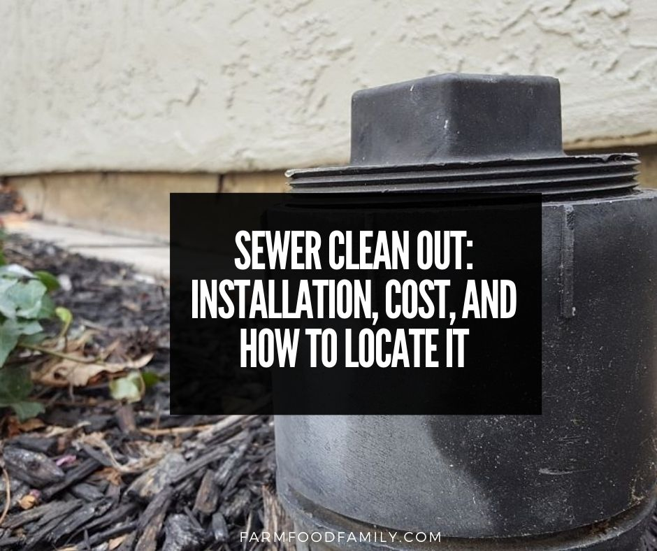 Sewer Clean Out 101 Installation Cost And Where It Is Located