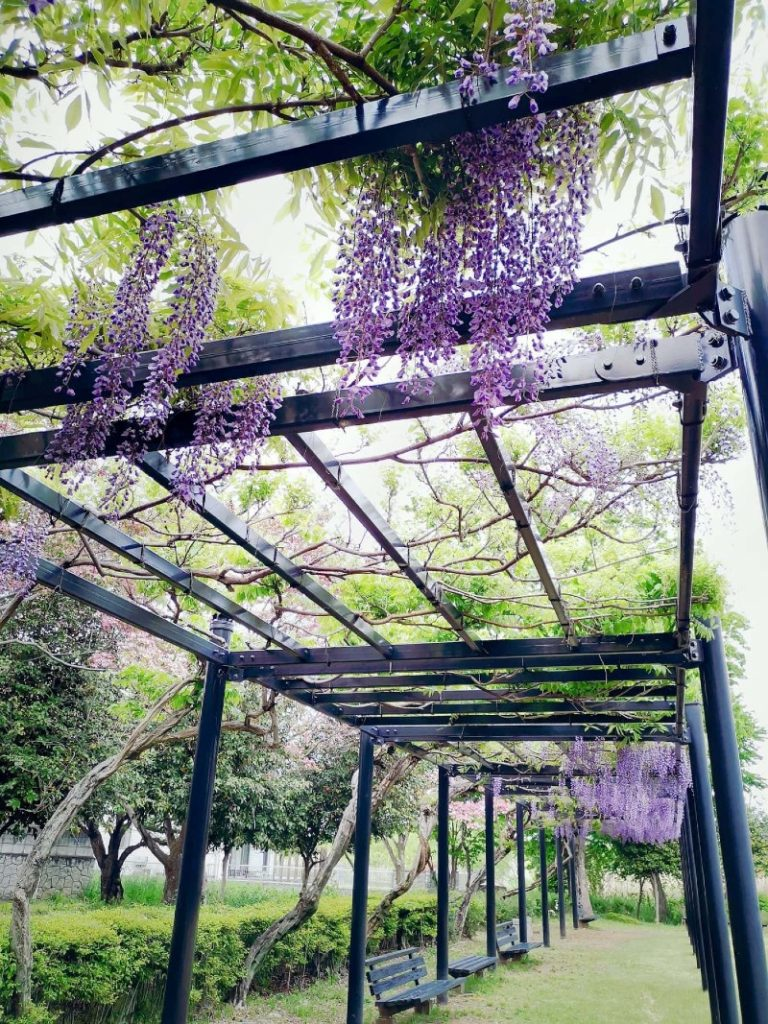 Do an Outdoor Grotto with A Pergola and Climbing Plants?