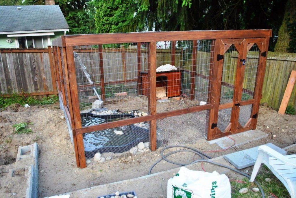 Ever Thought of A Pond On Duck Coop?