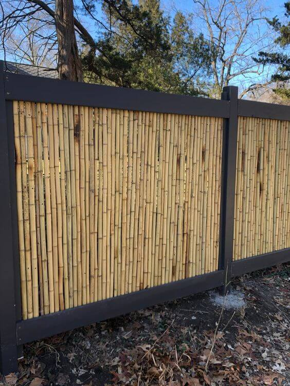 Consider Installing a Bamboo Fence
