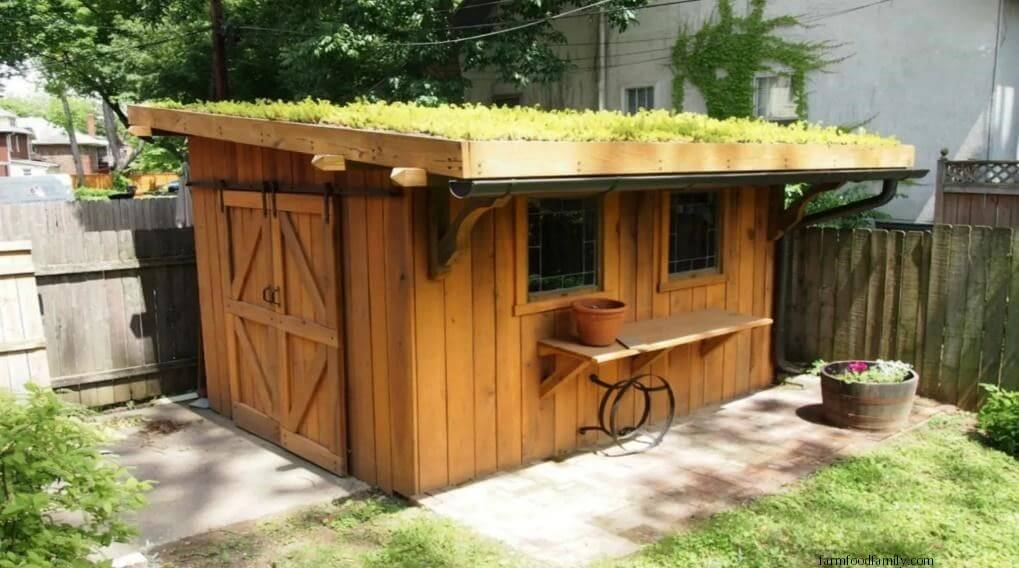 Green roofed office shed