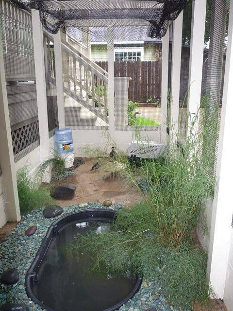 Customize A Rubbermaid Tub Into A Duck Pond