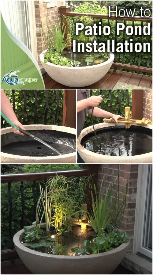 A Planted Zen Container Pond