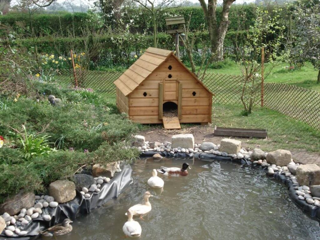 A Simple DIY Duck Pond Will Do
