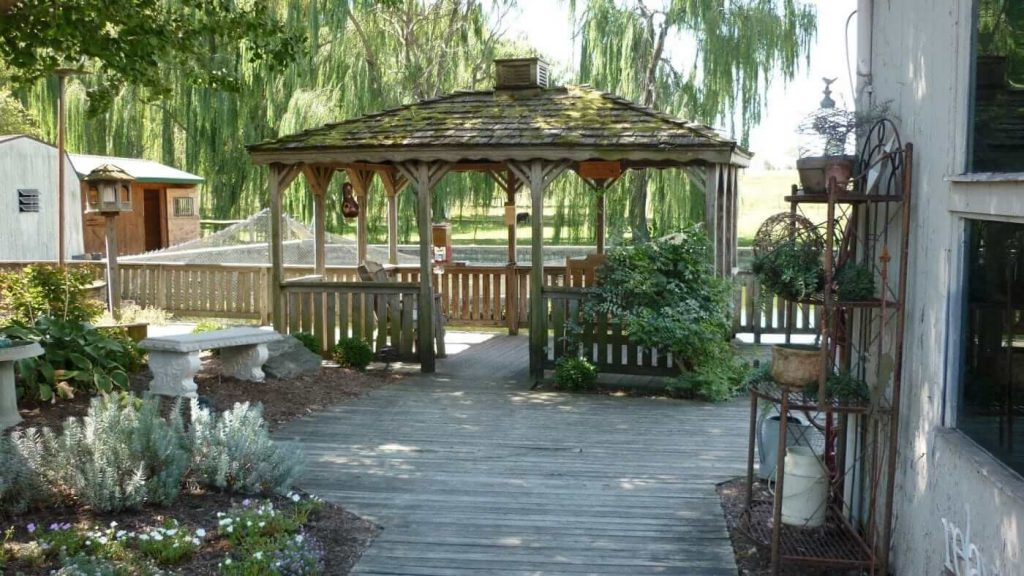 Introduce a Gazebo for Your Patio