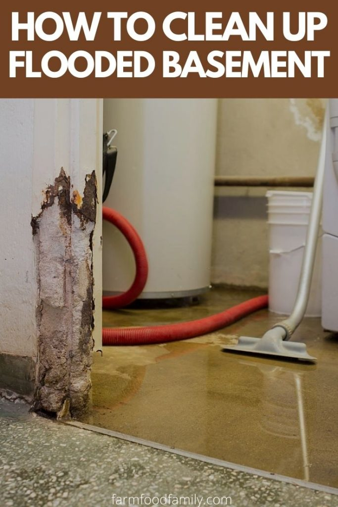 Flooded Basement Cleanup Restoration, Best Way To Dry Flooded Basement