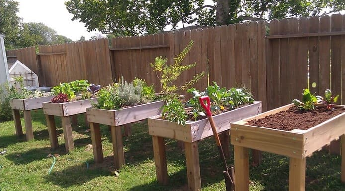 Wood raised bed with bottom shelves